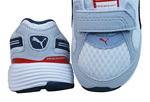 Puma Descendant V muchachos de los zapatos corrientes White