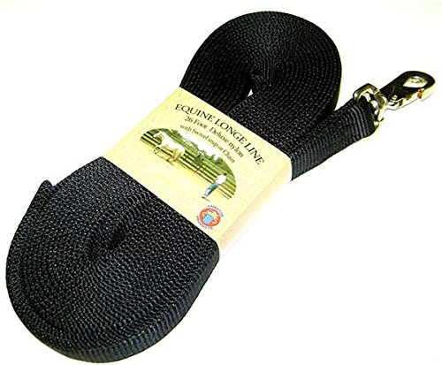 Hamilton Single Thick Nylon Horse Longe Line with Swivel Snap, 1-Inch/26-Feet, Black