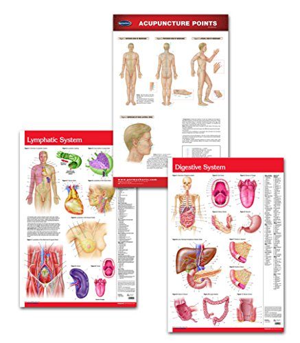 Naturopathy and Holistic Doctors Office Medical Wall Poster Bundle - 3 Laminated 24