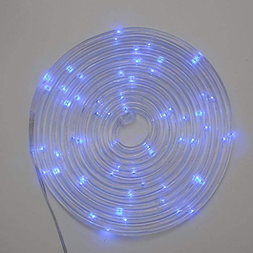 The Gerson Company 93023 15' Clear PVC Rope Micro LED Light String, Blue by The Gerson Company