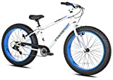 Cheap Takara Nobu Fat Bike, 26-Inch