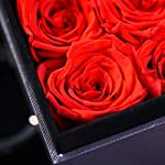 Preserved-Real-Rose-Never-Withered-Roses-Rose-Flower-Exquisite-Fresh-Roses-Upscale-Immortal-Flowers-in-Gilt-Jewelry-Box-Best-Gift-for-Female-Birthday-Anniversary-Christmas-Valentines-Day-Red