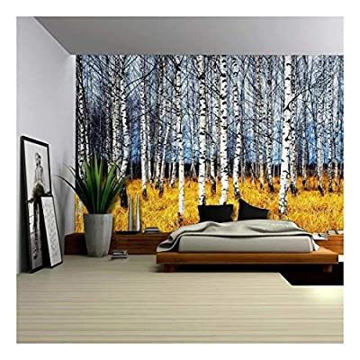 Astonishing Artistry, Classic Artwork, Landscape Mural of a Birch Tree Forest Wall Mural