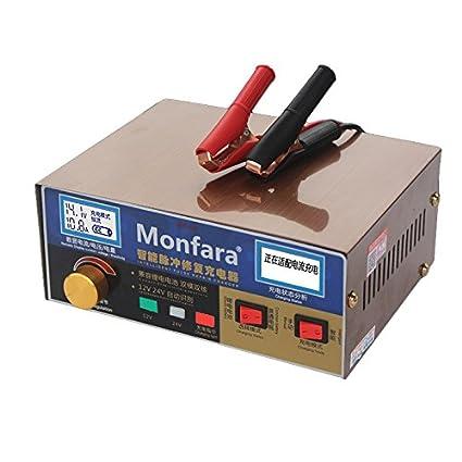 ETbotu 12V/24V 400AH - Cargador de batería para Coche y Scooter (Pantalla LCD para batería de Plomo ácido)