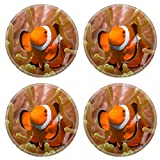 Liili Round Coasters Non-Slip Natural Rubber Desk Pads IMAGE ID: 23092118 Clownfish in an Anemone Bunaken Indonesia
