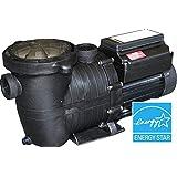 Variable Speed Pool Pump Energy Star Certified Splash Pumps Brand In Ground Pool Pump 1.5hp Vs 220v …