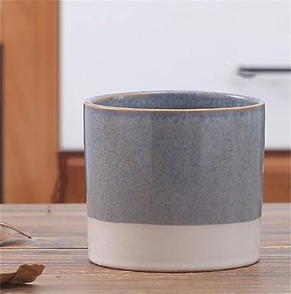 Amazon.com: Maceta de cerámica de dos colores para plantas ...