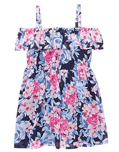Gymboree Baby Girls Cold Shoulder Floral Print Dress, Periwinkle Roses, 3T