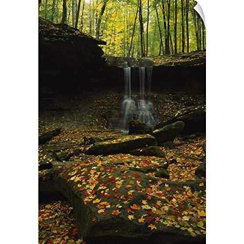 CANVAS ON DEMAND Waterfall in a Forest, Blue Hen Falls, Cuyahoga Valley National Park, Ohio Wall Peel Art Print.