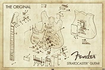 Amazon.com: Fender Stratocaster Guitar Original Diagram 36x24 ...