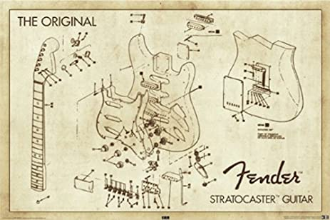 Amazon.com: Fender Stratocaster Guitar Original Diagram 36x24 Poster ...