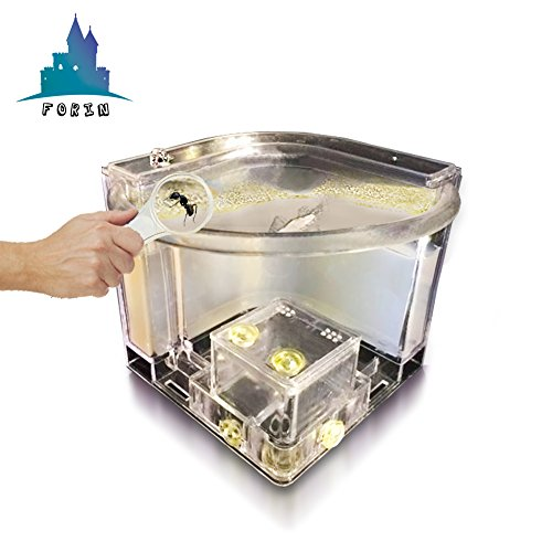 Forin Ant Nursery Castle Farm Maze with Feeding System Live Ant Viewing Habitat (White) by Forin