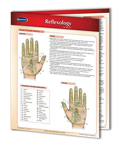 reflexology hand foot chart - 6