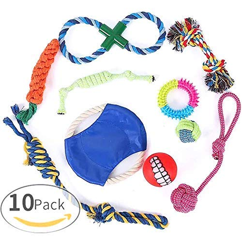 Slopow Dog Puppy Chew Toys 10 Pack for Playtime and Teeth Cleaning Medium Large Breeds