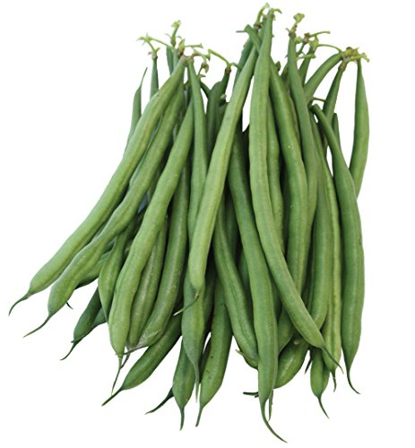 - Burpee French Filet Bush Bean Seeds 2 ounces of seed
