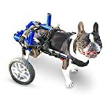 Walkin' Wheels Dog Wheelchair - for Small Dogs 18-25 lbs - Veterinarian Approved - Wheelchair for Back Legs