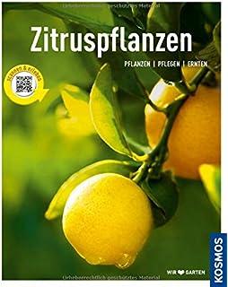 Zitruspflanzen: Zitrone, Orange, Kumquat & Co.: Amazon.de: Monika ... Richtige Pflege Von Zitruspflanzen