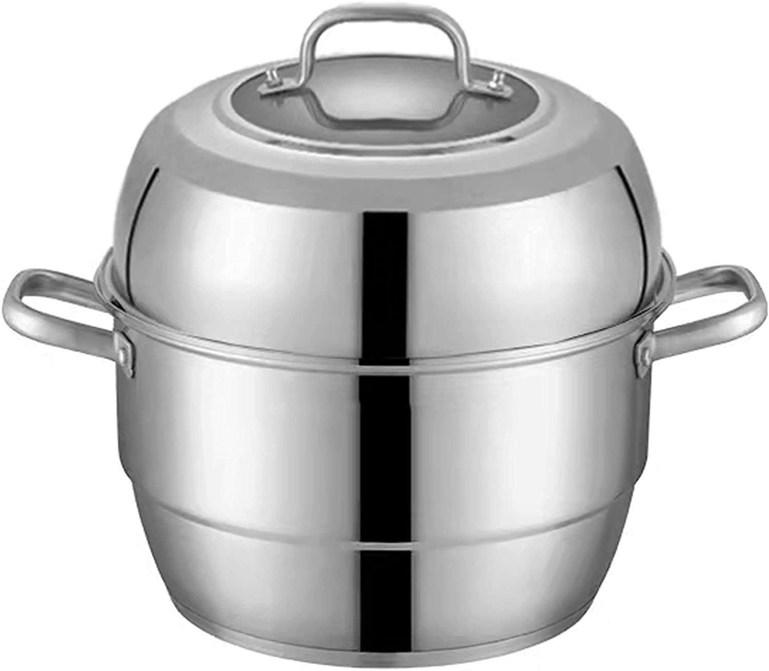 Stainless Steel Steamer 2-Tier Cooking Pot Max 81% OFF Double Layer A surprise price is realized