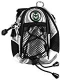 LinksWalker NCAA Colorado State Rams - Mini Day Pack - Silver