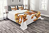 Lunarable Modern Bedspread Set King Size, Large Orange Scorpion Robot in Attack Pose Cyborg Bug Technology Automation Print, Decorative Quilted 3 Piece Coverlet Set with 2 Pillow Shams, Orange Grey