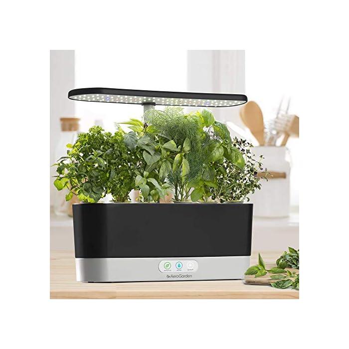 51QqHpJzRnL El sistema de iluminación LED de 20 vatios de espectro completo con alto rendimiento se sintoniza con el espectro específico que permite las plantas maximizar la fotosíntesis, lo que resulta en un crecimiento rápido y natural y cosechas abundantes. Cultiva hasta 6 plantas a la misma vez. Las plantas crecen en agua… no en tierra. Hidroponía avanzada simplificada. El panel de control sencillo y fácil de usar le indica cuándo añadir el agua, le recuerda cuándo añadir los nutrientes patentados (incluidos), además de encender y apagar las luces automáticamente