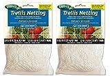 Gardeneer By Dalen Trellis Netting Heavy-Duty Nylon Tangle-Free Net 5′ x 15′  – Pack of 2 For Sale