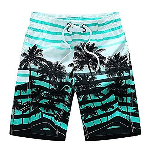 Newland Men's Colorful Stripe Coconut Tree Beach Shorts Swim Trunks Blue 29-30 Waist