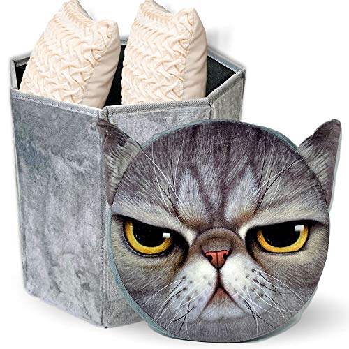 Cat Toy Bin with Cover- Collapsible Folding Octagon Decorative Storage Container with Padded Mad Cat Face Lid - Perfect for Organizing Toys, Books, Shoes, Blankets