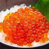 OWARI いくら 醤油漬け 冷凍 北海道産 小分け 1kg (100gx10P)