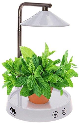 Mindful Design Multi LED Indoor Herb Garden - Grow Light for Plants & Vegetables by Mindful Design