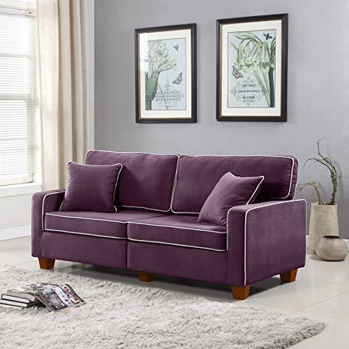 Divano Roma Furniture Collection - Modern Two Tone Velvet Fabric Living Room Love Seat Sofa (Purple) (Couches Apartment Size)