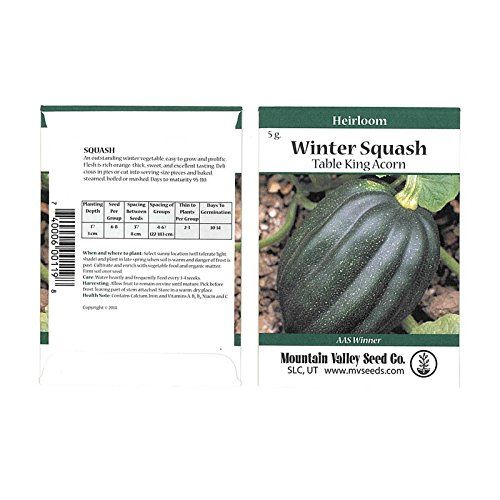 Table King Bush Acorn Winter Squash Garden Seeds - 5 g Packet - Heirloom, Non-GMO - Vegetable Gardening Seed - AAS Award (Bush Acorn Squash)