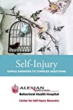 Self-Injury, Adrienne M. Yourek, 0990439003