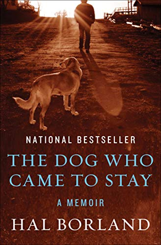 The Dog Who Came to Stay: A Memoir (Best Dog For Hunting Rabbits)