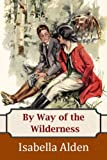 Front cover for the book By way of the wilderness by Pansy