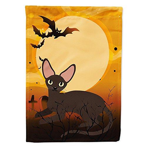 Caroline's Treasures BB4451GF Garden Size Halloween Peter Bald Cat Flag, Multicolor, Small -