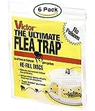 Victor M231 Ultimate Flea Trap Refills, (6 Refills)