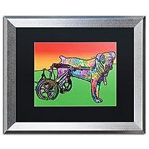 Trademark Fine Art ALI5829-S1620BMF Ospa Framed Original Artwork