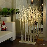 LED Lighted Birch Tree Indoor 5ft, 11 Trees, 160 LED Lights, Bonus Xmas Stocking, Bendable Branches, Easy Set Up, Warm White, Christmas Tree with Prelit Lights for Decorations Home, Festival, White