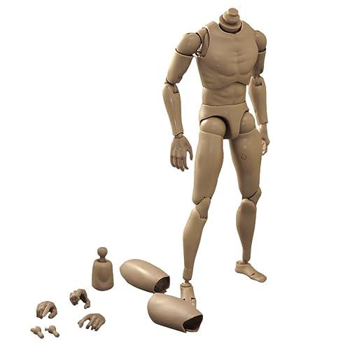 1/6 Juguetes Corporales de Figura de Acción Cuerpo Hombre Estrecho Masculina Para Ttm19 Ttm18