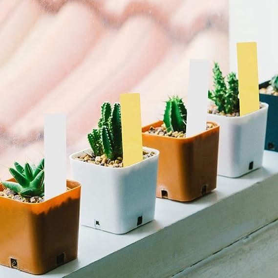 Wifehelper Etiquetas de Plantas, Etiquetas de macetas de Plantas ...