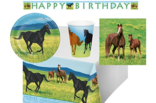 Wild Horses Birthday Party Supply Pack! Bundle Includes Plates Napkins Cups for 16 Guests Plus Jointed Party Banner and Table Cover