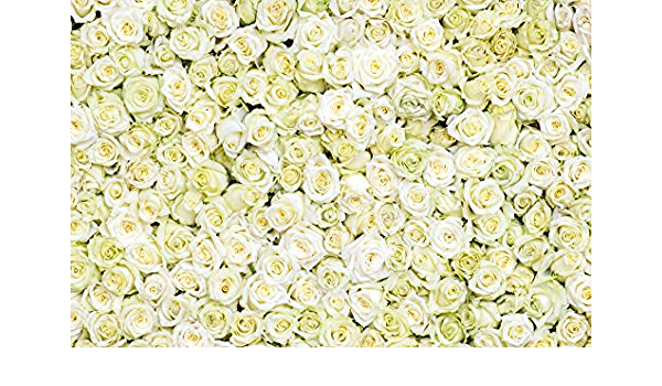 Grey and White 10x15 FT Backdrop Photographers,Flourishing Blossoms Artistic Florets Bridal Bouquet Anniversary Theme Background for Photography Kids Adult Photo Booth Video Shoot Vinyl Studio Props