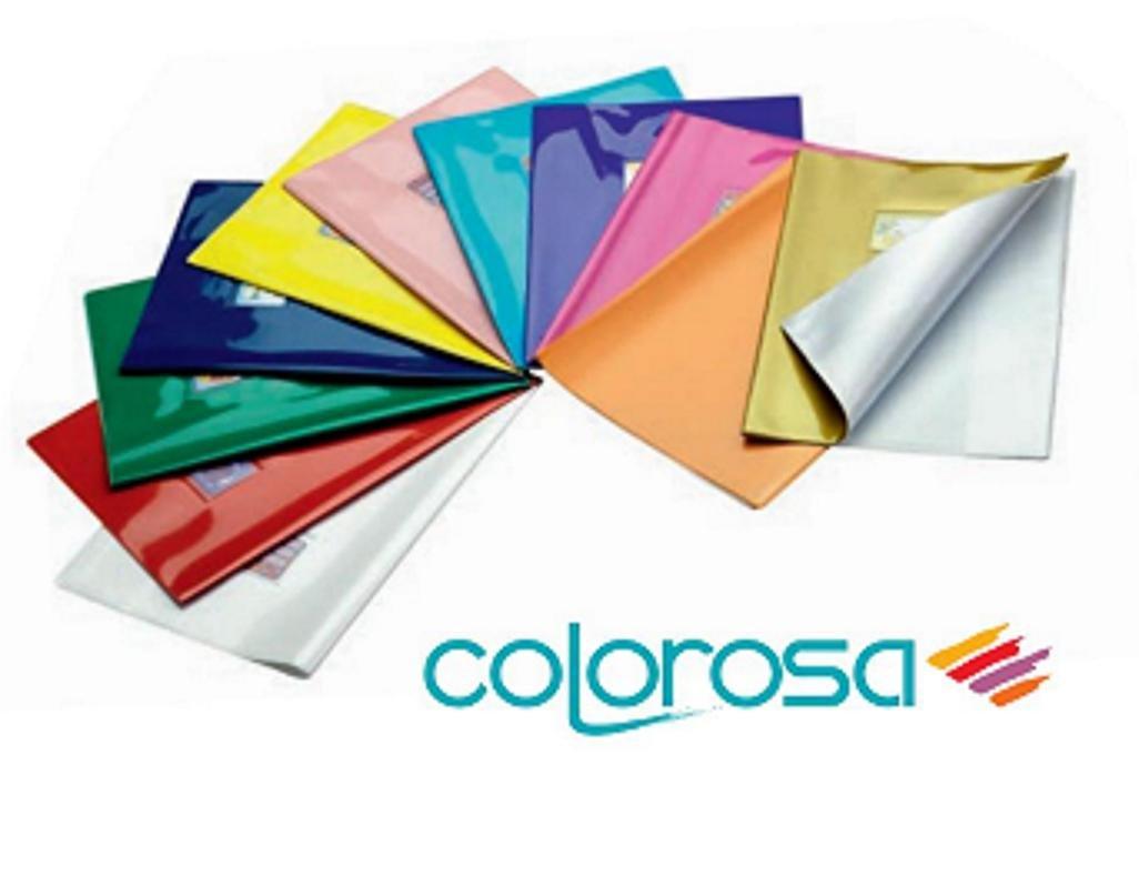 Copertina Quadernone Colorosa Rosa Riplast A4