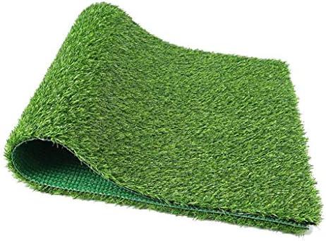 Spezielle Verschlüsselung Anti-Aging-Upgrade Umweltschutz grünes Bodengitter 2 cm Verschlüsselung verdickter Kunstrasen (Farbe: grün) YNFNGXU (Size : 2x2m)