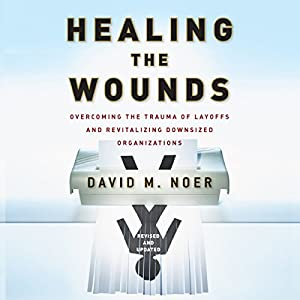 Healing the Wounds Audiobook