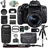 Canon EOS Rebel T6i DSLR Camera Bundle with Canon EF-S 18-55mm IS STM Lens + Canon EF 75-300mm III Lens + 64GB SDXC Memory Card + Accessory Kit – International Version