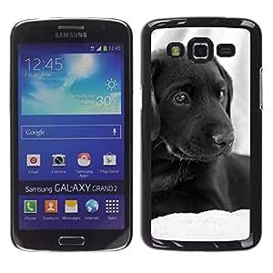 Vortex Accessory Carcasa Funda PARA SAMSUNG GALAXY GRAND 2 ( SM-G7102 / SM-G7105 ) For - Curly Coated Black Short Hair Retriever Dog