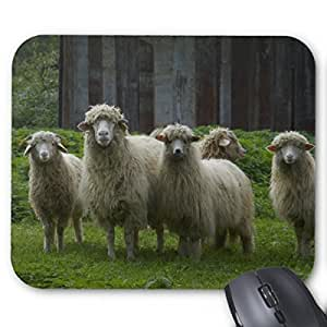Custom Beach Blurred Anti Slip Comfort Gaming Mouse Pad - Durable Office Accessory Gift