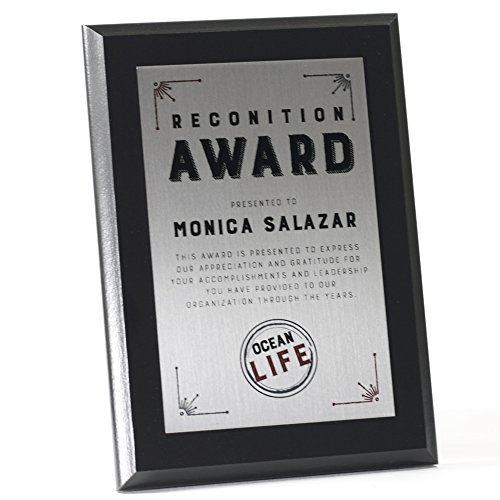 Sublimated Plaques - Color Metal Award (10.5'' x 13'', Silver) by Plaquemaker